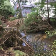 Die Flut – oder: Mensch und Natur